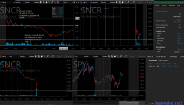 Шорт в SNCR