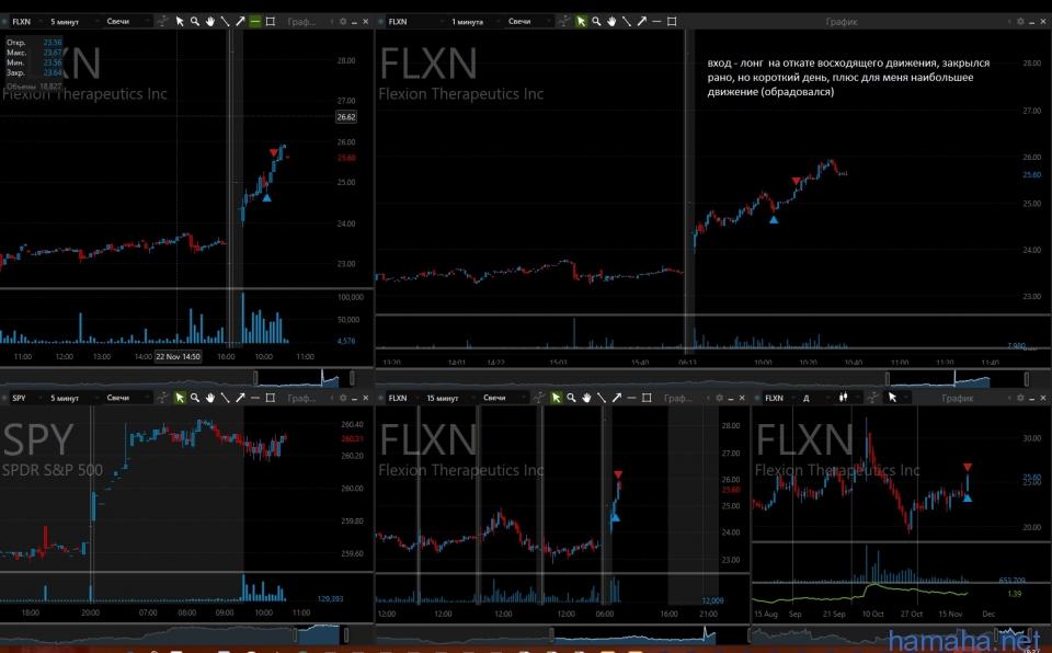 24-11-17. FLXN