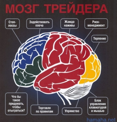 Мозг трейдера