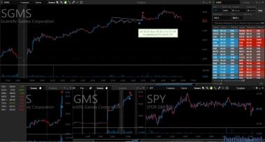 SGMS 25.07.17